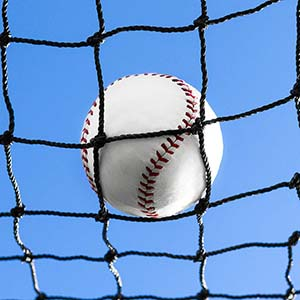 Best Baseball Backstop Net