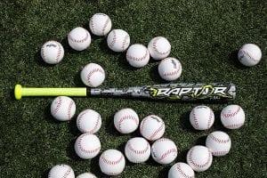 best youth baseball bat rawlings raptor